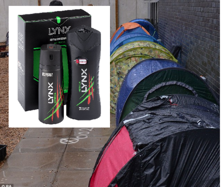 lynx - tent.png